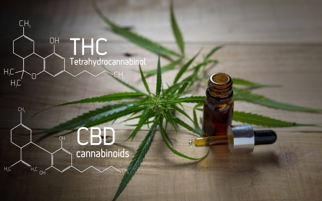 Broad Spectrum vs. Full Spectrum CBD: What's the Difference?